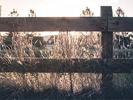 Postes-de-madera-1